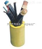 【企标】DJYVP电缆,DJYVP电缆价格